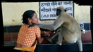 HEART TOUCHING RELATIONS OF 'WOMAN WITH MONKEY' - Exploring Incredible India
