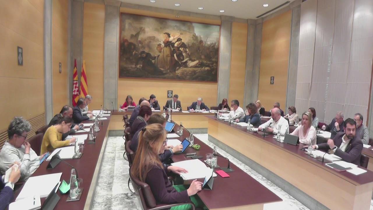 Ple de la Diputació de Girona