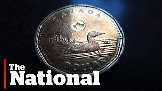 The loonie turns 30