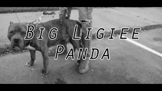 Big Ligiee - Panda Remix (Official Video) Shot by KD Visuals