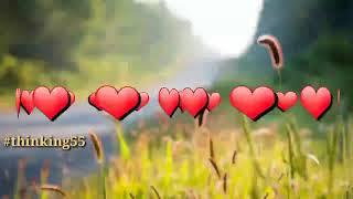 Ramzan Status 2018 _ Allah Ka Innam hai Ramzan Ishq hai width=