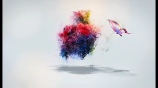 Butterfly Intro without Text 3D  Intro Without Text  Intro Without Text without copyright
