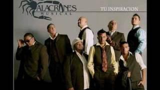 Te Juro Que Te Amo- Alacranes Musical
