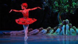 Rite of Spring • Firebird | Stravinsky & The Ballets Russes | Mariinsky 2008 (DVD/Blu-ray trailer)