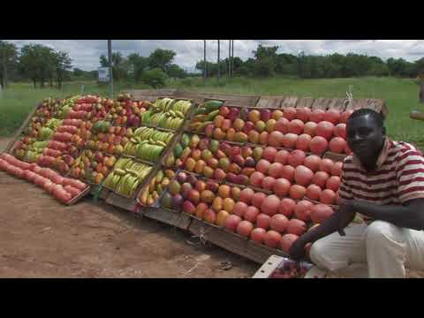 Tzaneen and Surroundings – South Africa Travel Channel 24