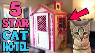CHIBI GOES TO 5 STAR CAT HOTEL!!!