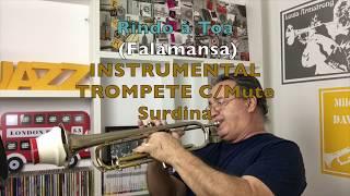 Rindo À Toa Falamansa Instrumental Trompete