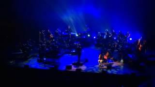 """Grand Corps Malade & L'Orchestre symphonique Confluences """"Le banc"""" live - Lyon 23/11/2015"""