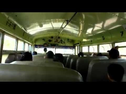 Chicken Bus music