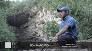 El sótano de las hahuas: donde miles de guacamayas vuelan a un precipicio