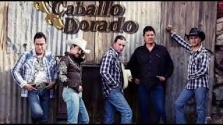 Gerardo Gameros - Reina morena - Caballo Dorado