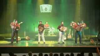 Sons do Minho - Rosinha vai na roda | Live | Official Video