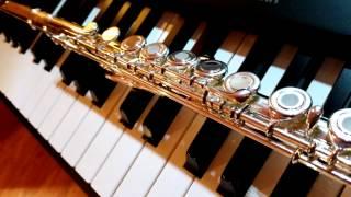 Phoolon Ka Taaron Ka - Instrumental Cover - Flute and Piano, Warm Relaxation music