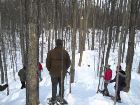Snowshoeing at Gatineau Park
