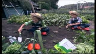 Kinderen voor Kinderen 11 - De achtertuin
