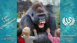 Animals Scaring Kids At Zoo | Animals Love To Scare Cute Kids