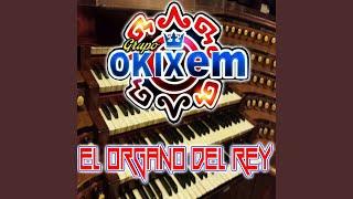 El Organo Del Rey