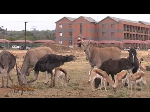Bains Game Lodge Accommodation Bloemfontein South Africa