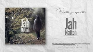 Jah Nattoh - Es un día especial (Another Night Riddim)