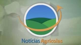 Vídeos Técnicos Fertiláqua - PCP Soja Dimicron