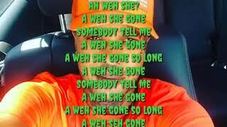 Tommy lee - love you still ( lyric)