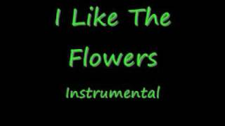 I Like The Flowers - Instrumental