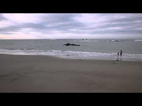 Playa Los Tamarindos