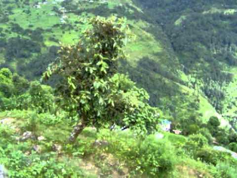 Subiendo a los Annapurnas