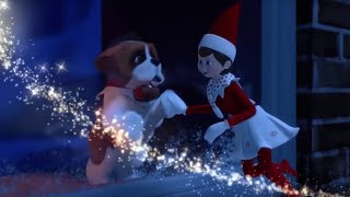 Pups at the Window from Santa's St. Bernards Save Christmas! (Sing-Along)