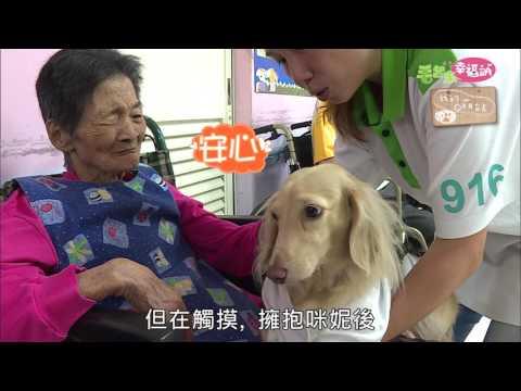 毛起來幸福站《狗醫生與牠的訓練師》 - YouTube