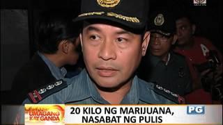 P400K worth of marijuana seized in QC