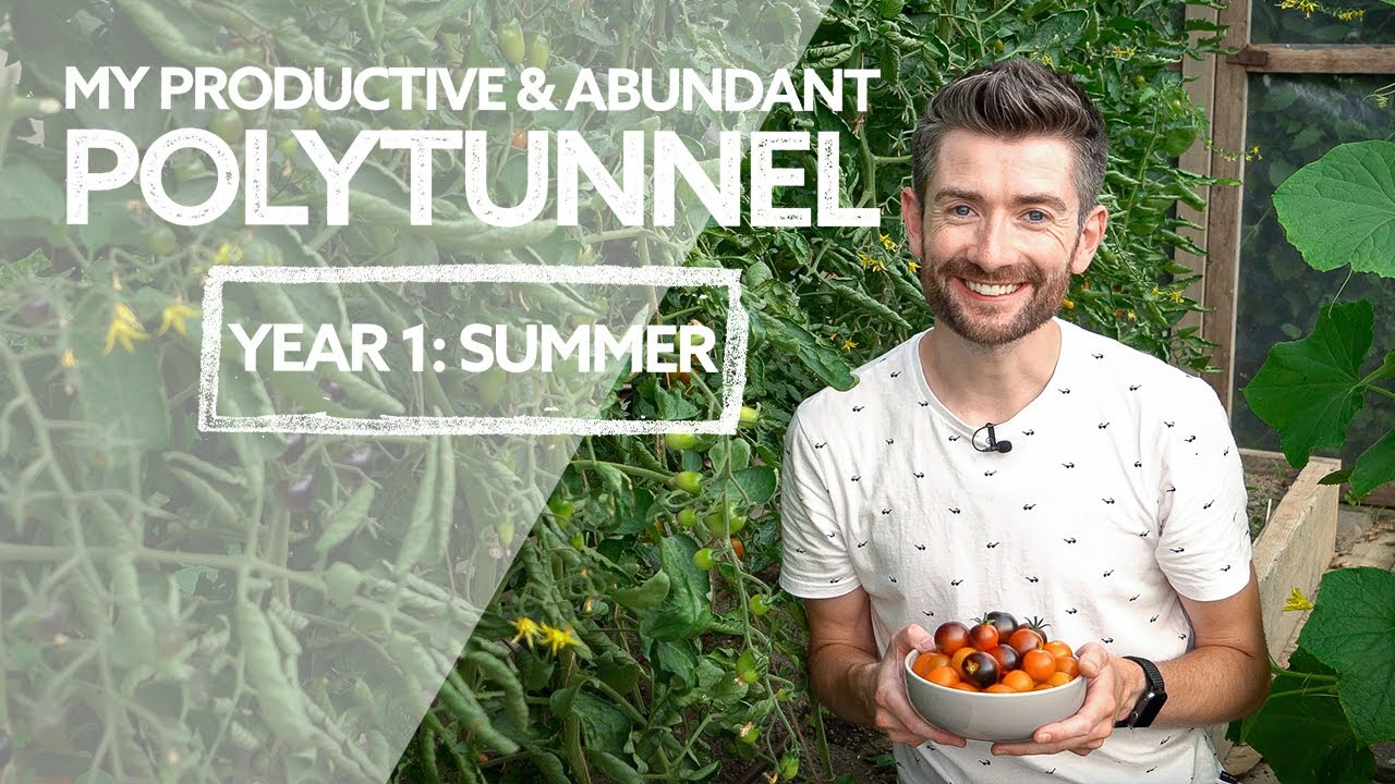 Polytunnel Update Tour! | Productive & Abundant in Year 1! | Summer 2021