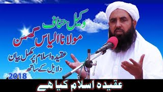 Mulana Ilyas Ghuman width=