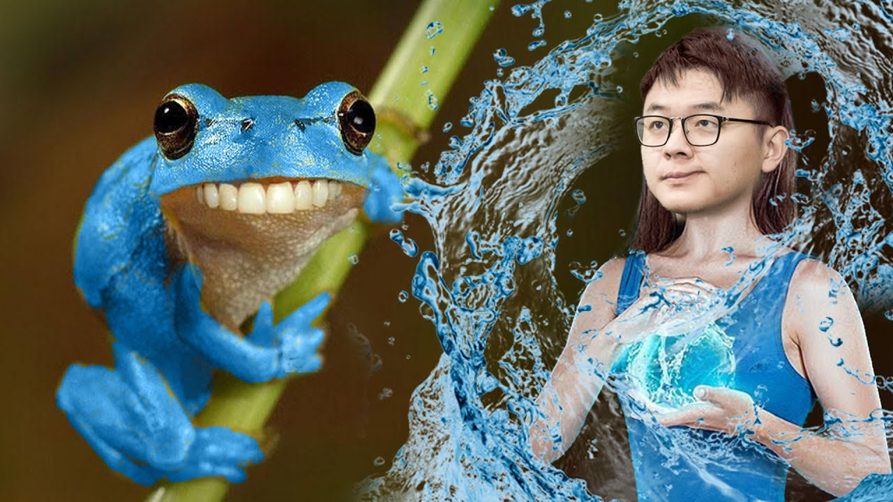MidOne - ICEFROG WTF IS THIS??
