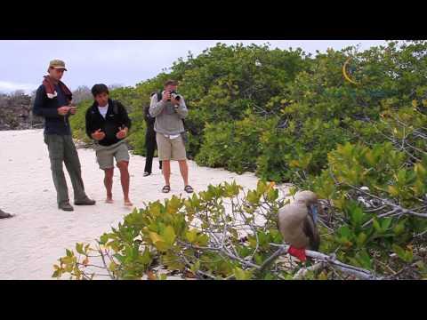 Peru – Chile – Ecuador – Galapagos – Vía Natura