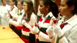 Coro de Campanas de El Tocuyo Dic 2015