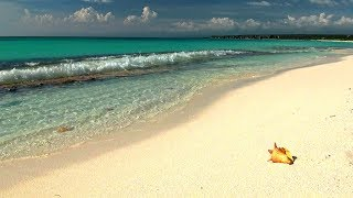 Relaxing Music with Gentle Ocean Sounds, Soothing Waves and Peaceful Music