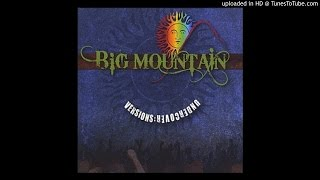 Big Mountain (Feat. Fiji) - A Place In The Sun