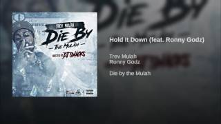 Hold It Down (feat. Ronny Godz)