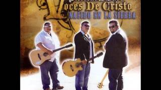 Voces de Cristo juan el bautista