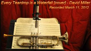 Every Teardrop is a Waterfall [Cover]- David Miller