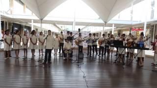 Canción del Mariachi.