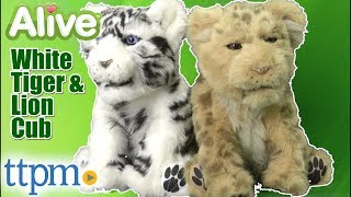 Alive White Tiger Cub and Lion Cub from WowWee