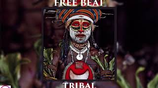 *FREE BEAT* Tribal Rap Type Beat (Prod. Vidorra)