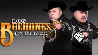 Serafin Zambada - Los Buchones De Culiacan