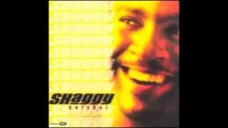 Why Me Lord? - Shaggy