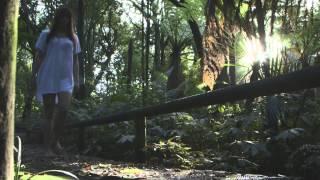 Mr. Probz - Waves (Robin Schulz Remix) Unofficial Music Video