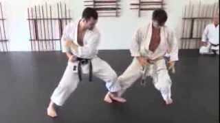 front leg sweep - karate