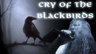 Amon Amarth - Cry Of The Blackbirds [HD+] [Fanvideo]