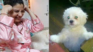 REACTING on my Dogs CHILDHOOD pictures   Ss Vlogs :-)